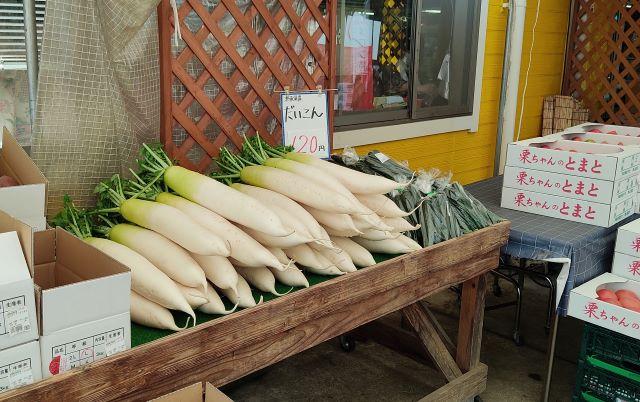 ポケットファームどきどき 野菜